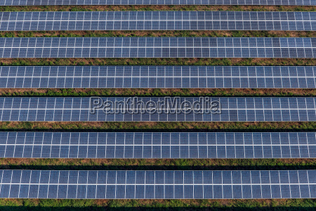 solar panels solar farms