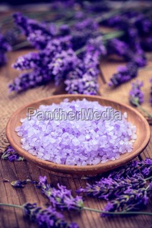 sal disenyo flor planta lavanda mineral