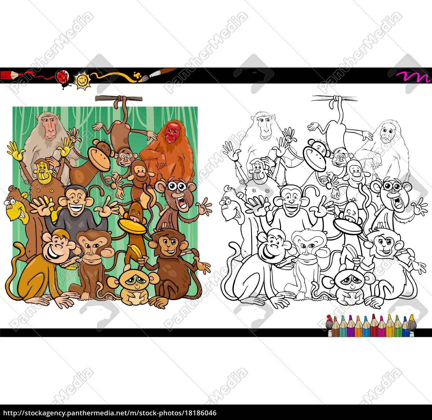 Vector Libre De Derechos 18186046 Personajes De Mono Libro Para Colorear