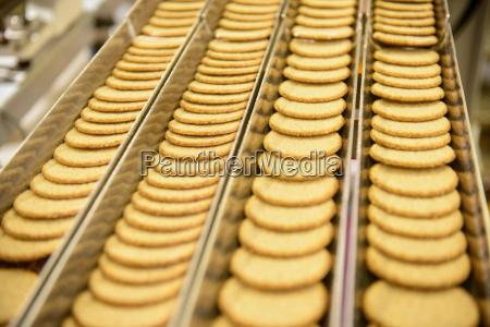 orden comida primer plano planta industrial