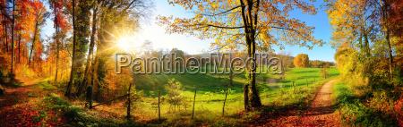 paisaje magico en otonyo panorama soleado