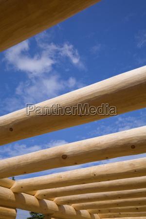 industria madera futuro pino canada al