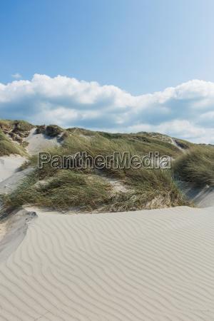 olas en la arena vacaciones