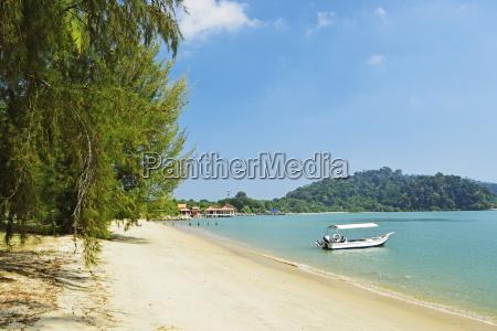 arbol trafico asia malasia horizontalmente al
