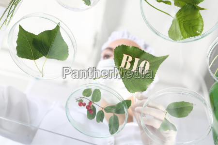 biotechnology engineer at work
