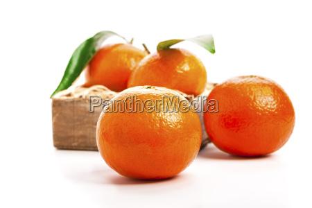 mandarinas maduras con hojas