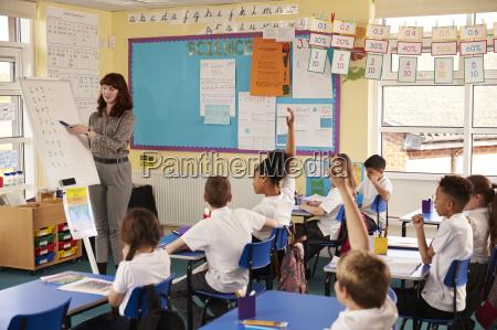 primary school teacher using a flip