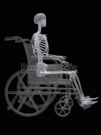 ilustracion de un esqueleto sentado en