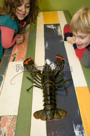 boy and girl looking at lobster