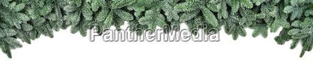 amplia frontera para navidad ramas de