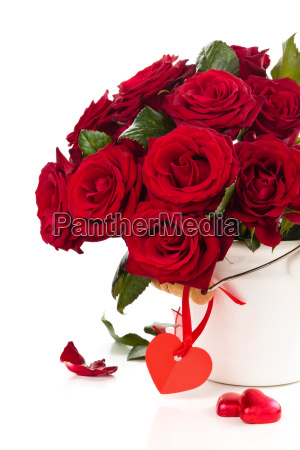 red roses in bucket