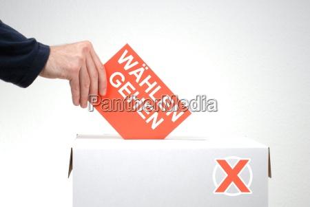 ir voto votacion seleccionar eleccion la