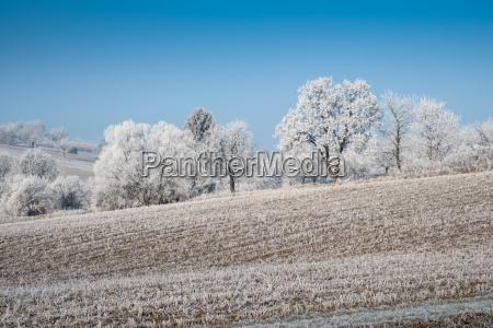 invierno austria escarcha congelacion enero