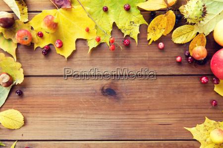 marco de hojas de otonyo frutas