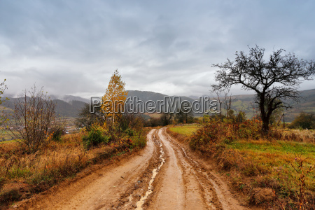 muddy ground after rain in mountains