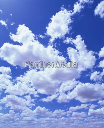 nubes de cumulos blancos hinchados en