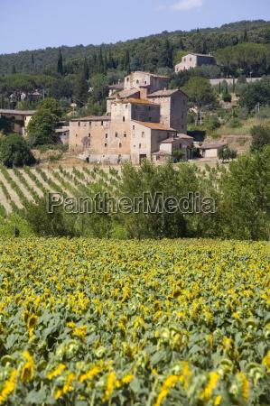 near siena val dorcia tuscany italy