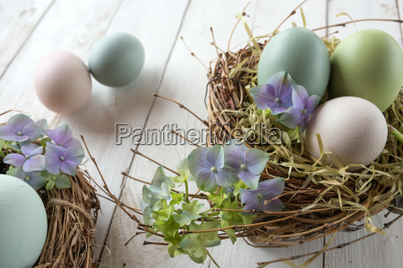 easter nest with eggs and blossoms