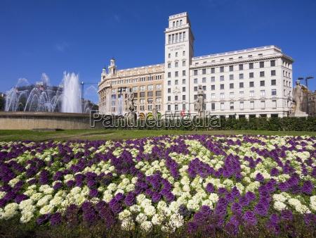 banco paseo viaje flor planta espanya