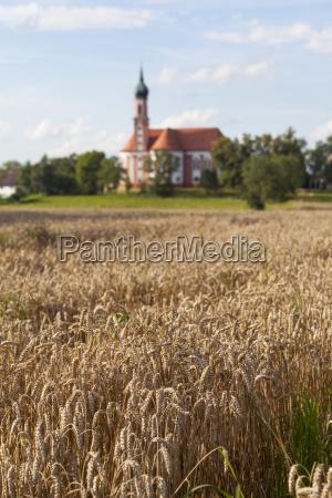 torre religion iglesia arbol agricultura nube