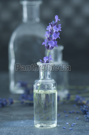 aceite aromatico y ramita de lavanda