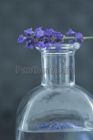 aceite aromatico en una botella de