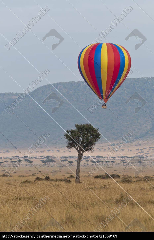 africa, , kenya, , maasai, mara, national, reserve, - 21058161
