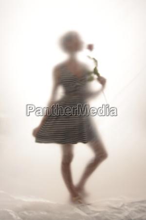 mujer personas gente hombre flor planta