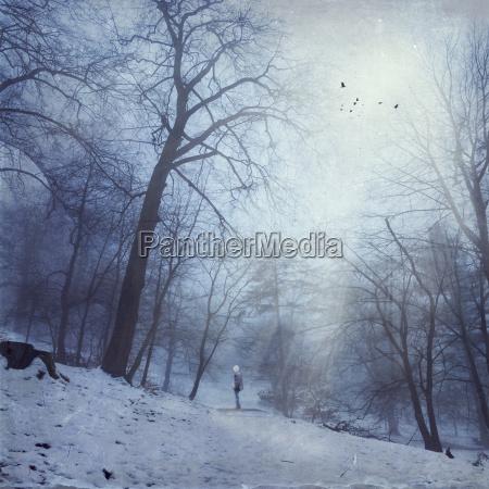 personas gente hombre invierno soledad alemania