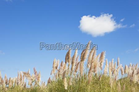 paseo viaje nube al aire libre
