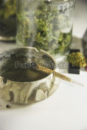 estudio burning marijuana junta en cenicero