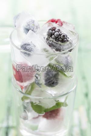 vidrio vaso hoja color frio verano