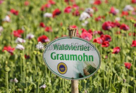escribir flor planta agricultura campo austria