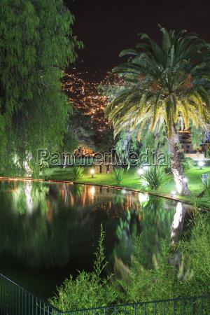 viaggio viaggiare albero parco giardino notte