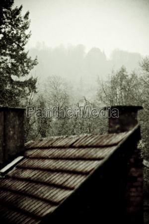 arbol niebla baldio cielo chimenea bosque