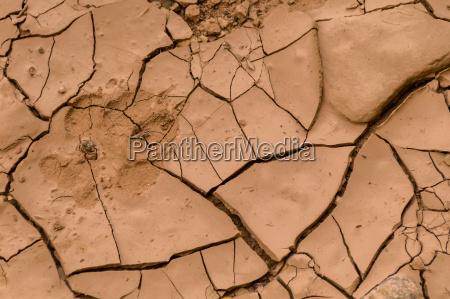 medio ambiente desierto suelo suciedad pata