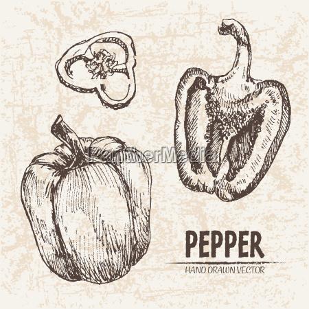 comida pimienta objeto dulce especia liberado