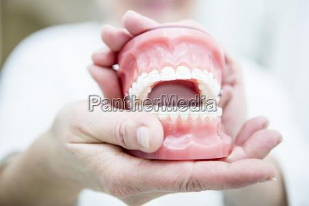 hands holding dentures