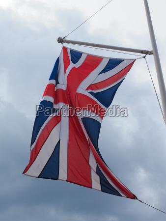 caucasico europeo europa inglaterra bandera gato