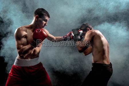 dos boxeo boxeador profesional sobre fondo
