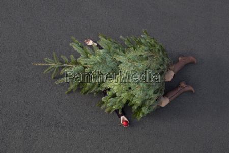 mujer tumbada enterrada bajo el arbol