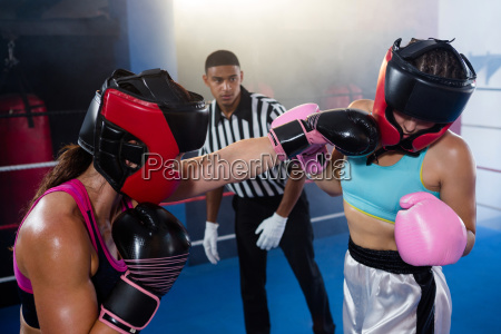 male referee looking at female boxer