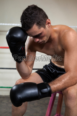 wounded boxer relaxing in the boxing