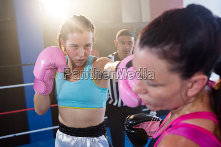 referee looking at female boxers fighting