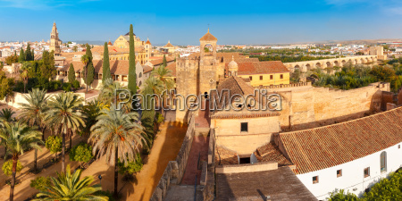 view of mezquita from alcazar in