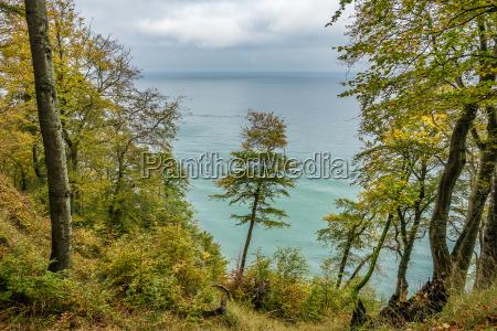 the baltic sea coast on the