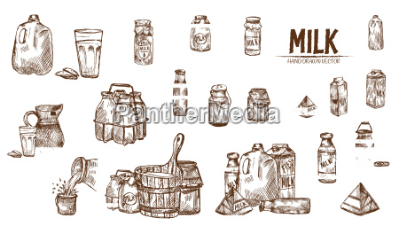 digital vector detailed line art milk