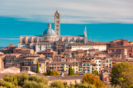 siena cathedral in the sunny day