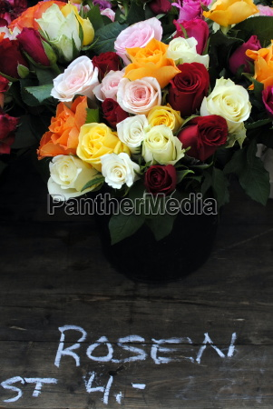 flor planta rosa venta amor amatorio