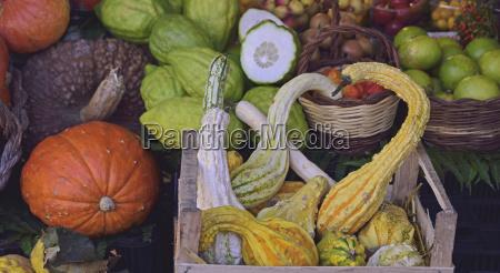 verduras de otonyo en el mercado